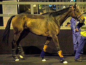 Cirrus Des Aigles arrives in Hong Kong, December 3, 2011.
