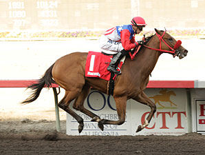 City by the Bay wins the 2013 Barretts Debutante Stakes.