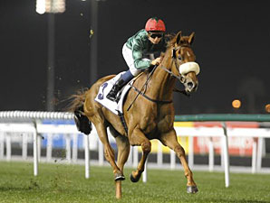 City Style wins the 2012 Al Naboodah Construction Group.