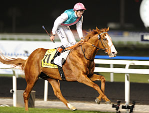 Cityscape wins the 2012 Dubai Duty Free.