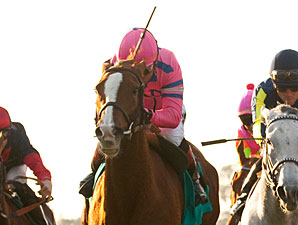 City to City in the Buena Vista Handicap.