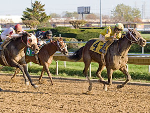 Class Break wins the 2011 Showtime Deb.