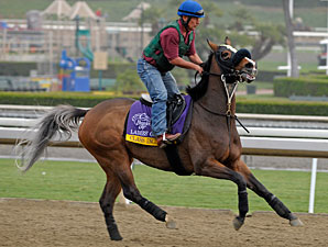 Class Included - Breeders' Cup 2012