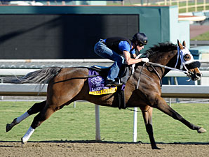 Class Included at Santa Anita 10/29/2012.