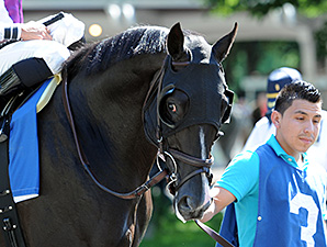 Clearly Now wins the 2014 Belmont Sprint Championship.