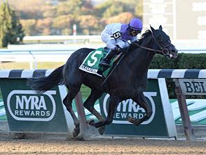 Clearly Now wins the 2013 Bold Ruler.