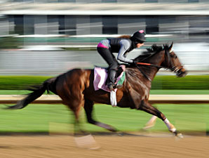Close Hatches - Churchill Downs, April 30, 2013.