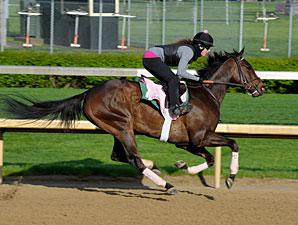 Close Hatches preps for the Kentucky Oaks 4/28/2013.