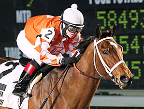 Closing Report wins the 2014 Azalea Stakes.
