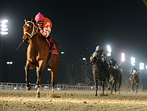 Closing Report wins the 2014 LA-Bred Premier Night Starlet.