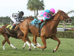 Cloudy's Knight wins the 2009 W. L. McKnight.