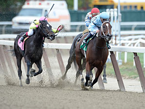 Cluster of Stars wins the 2013 Iroquois.