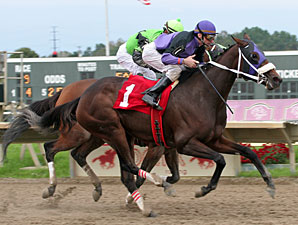 Coco's Sweetie wins the 2011 PA Horse Breeders Distaff.