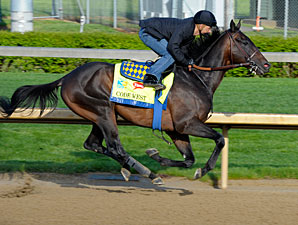 Code West works towards the Kentucky Derby.