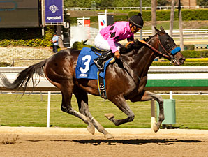 Code West - Maiden Win, October 26, 2012.