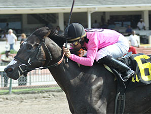Coffee Boy wins the 2010 Unbridled Stakes.