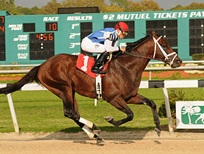 Colizeo wins the 2011 Challenger Stakes.