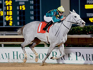 Color Code wins the 2012 Two Altazano Stakes.