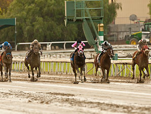 Comma to the Top wins the 2012 Daytona Stakes.