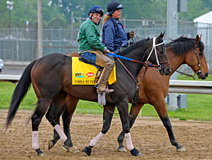 Comma to the Top at Churchill Downs 5/4/2011.