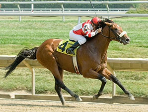 Commander Maiden Win, Delaware Park 09/01/10