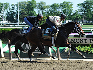 Commissioner jogs at Belmont Park May 25.