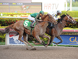 Commissioner - Allowance Race, January 3, 2014.