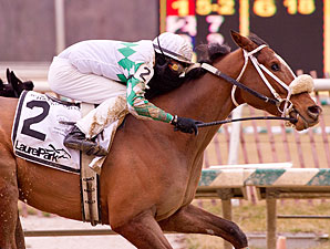 Concealed Identity wins the 2013 John B. Campbell Handicap.