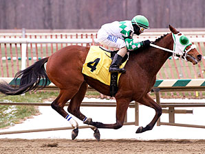 Concealed Identity wins the 2010 Maryland Juvenile Championship.
