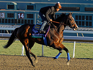 Contested at Santa Anita 10/29/2012.