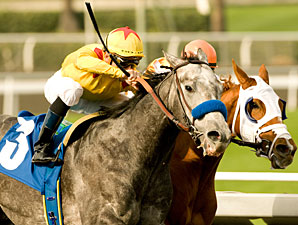 Conveyance wins the 2010 San Rafael.