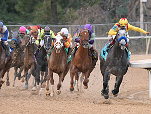 Conveyance wins the 2010 Southwest Stakes.