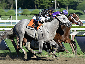 Corfu, white blaze, wins the Saratoga Special.