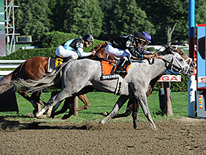 Corfu, bay, wins the Saratoga Special.