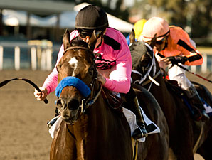 Cost of Freedom wins the 2010 Vernon Underwood.