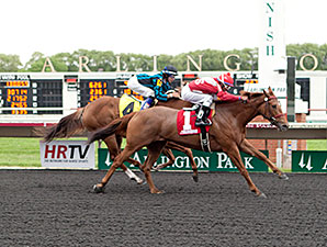 Countess Cashmere wins the 2014 Purple Violet Stakes.