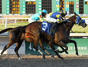 Country Flavor wins the 2010 Tenacious Handicap