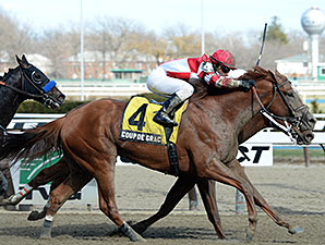 Coup de Grace wins the 2014 Bay Shore Stakes.