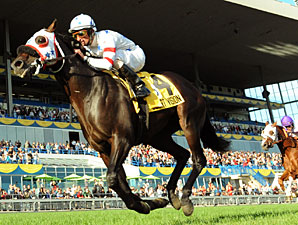 Court Vision wins the 2010 Woodbine Mile,