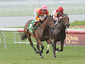 Courtesan wins the 2013 Juvenile Filly Turf Stakes.