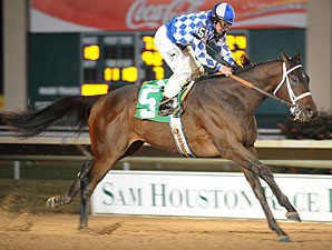 Coyote Legend wins the 2009 Groovy Stakes.