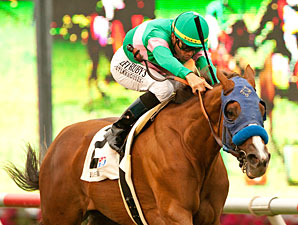 Cozi Rosie wins the 2011 John C. Mabee Stakes.