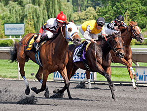 Cozze Up Lady wins the 2013 Chicago Handicap.