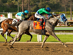 Creative Cause wins the 2012 San Felipe.