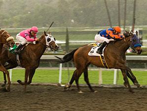 Crisp wins the 2010 Santa Anita Oaks.