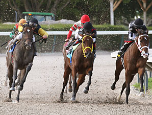 Crumb wins the 2012 Joe O'Farrell Juvenile Fillies.