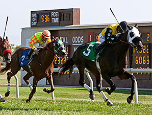 Crushed It wins the 2014 Robert Dupret Derby.