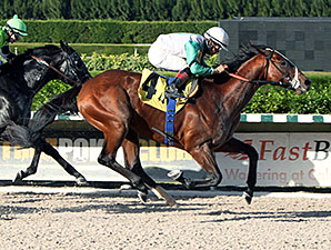 Csaba wins the 2013 Fred W. Hooper Handicap.