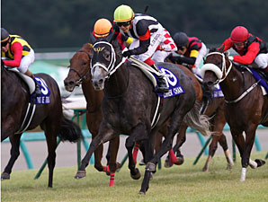 Curren Chan wins the Sprinter Stakes in Japan.