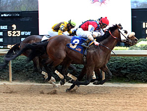 Cyber Secret wins the 2013 Razorback.